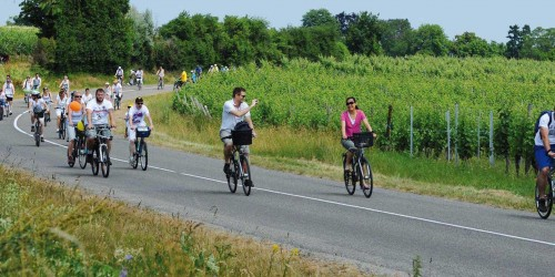 slowup-alsace-vignoble1
